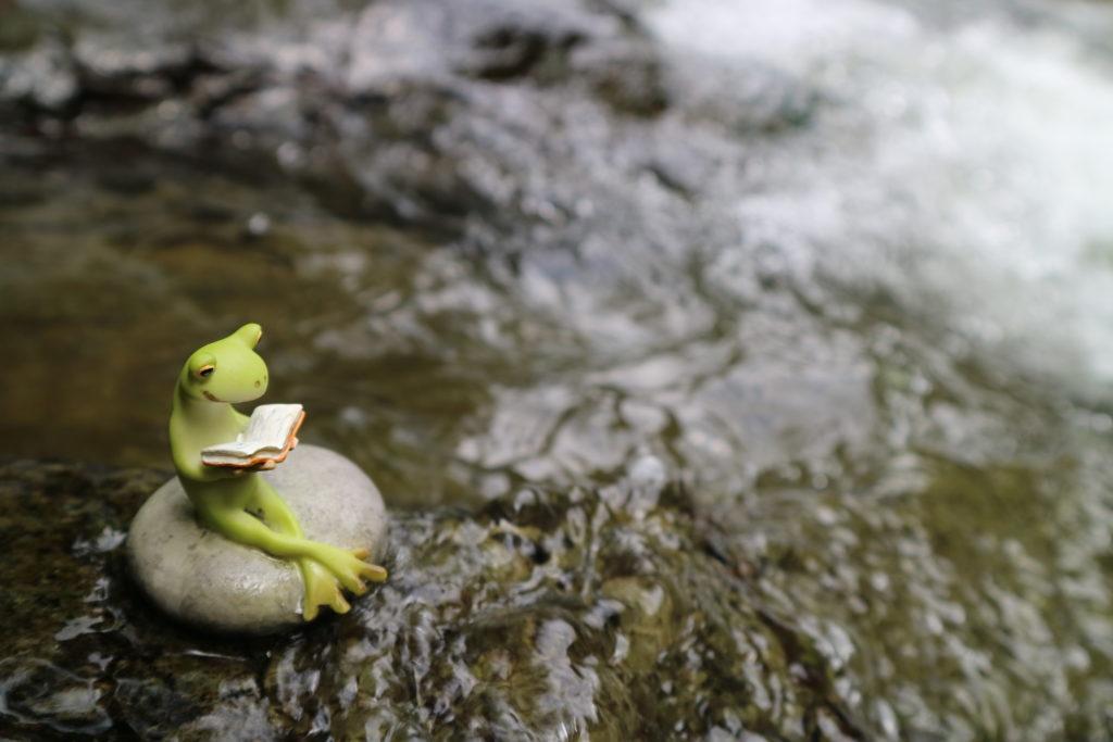 蛙 の 知らず 大海 を 中 の 井