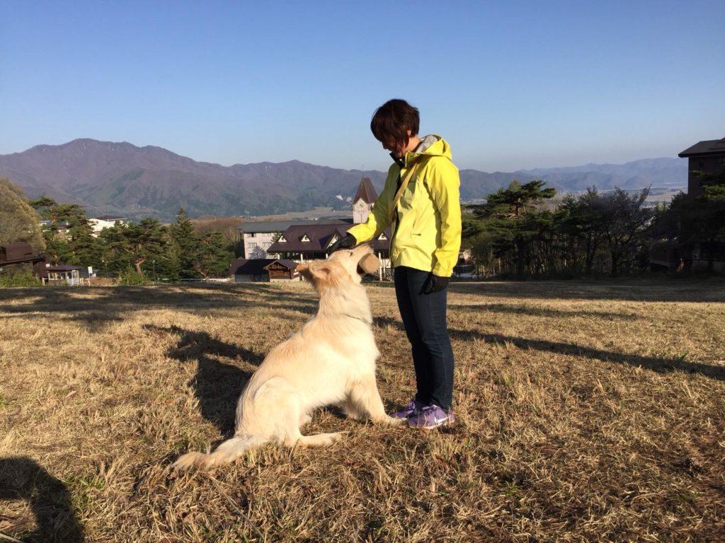 犬と人が幸せに暮らすためにドッグトレーナーが教えたい3つのこと