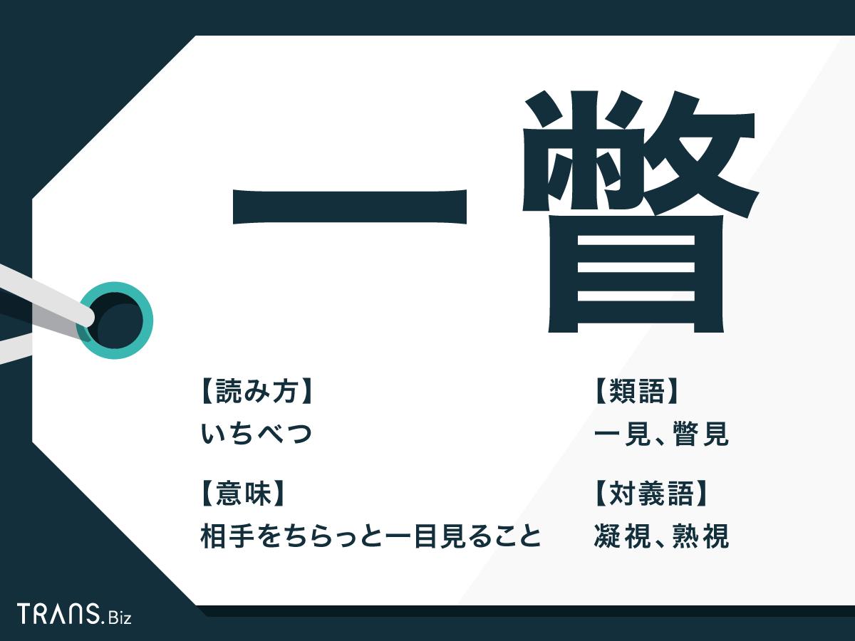 ず 一瞥 も くれ くれぇ海老|EpoK合同会社|広島県呉市の養殖場