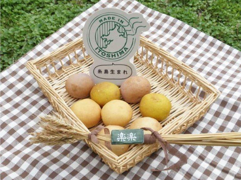 福岡・糸島の自然の恵みを詰め込んだ天然酵母パン。石原貴さんがパンを通して伝えたいこと